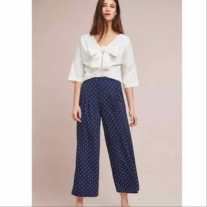 EUC ANTHRO | Evidnt Wide Leg Trousers